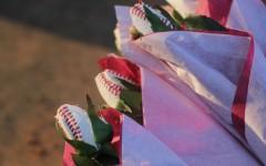Slideshow: Baseball vs. Plano