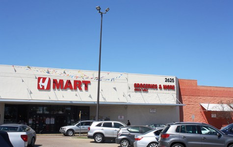 Review: H-Mart plaza represents Asian backgrounds