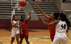 Lady Farmers to square off against dragons