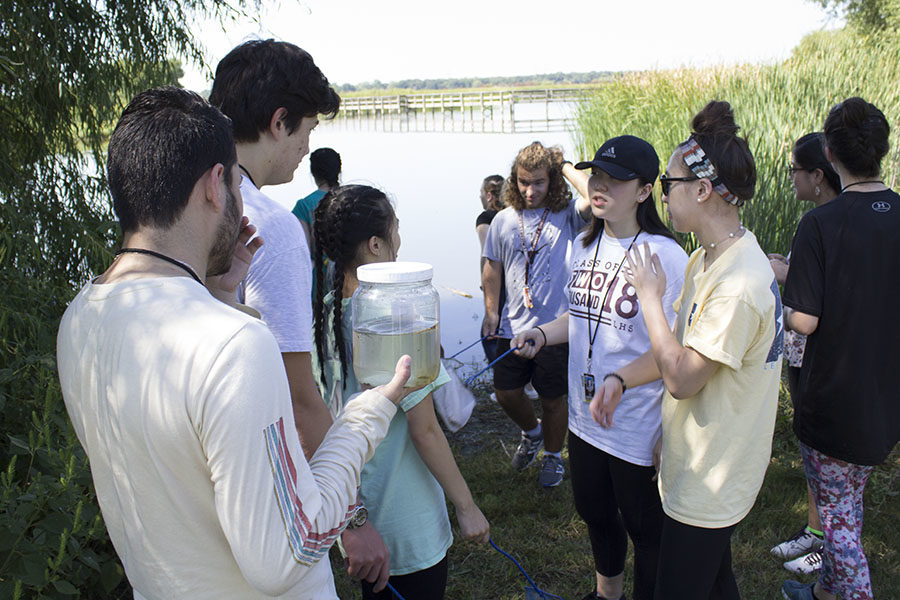 Students+have+a+discussion+about+the+biotic+organisms+they+caught+in+the+jars.