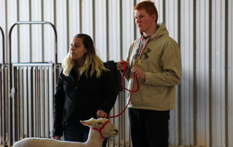 Future Farmers of America members gain agricultural experience
