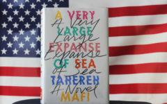 Tahereh Mafi's
