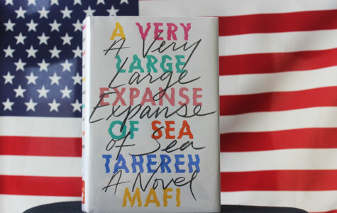 Farmer Fiction: 'A Very Large Expanse Of Sea' tells fascinating story of Muslim girl