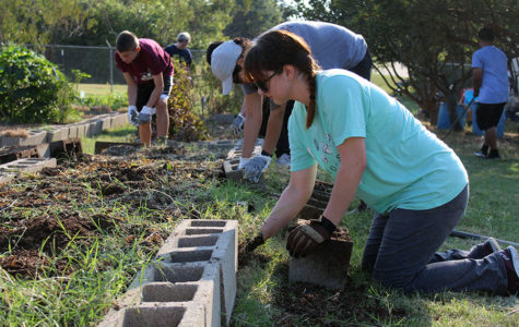 A volunteer removes the cement block to pull weeds out from the ground.